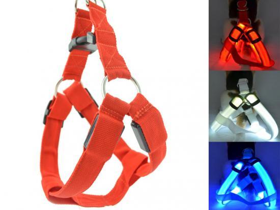 postroj-nylon-svitici-s-plast--dutinkou-modry-bf-30-43-cm-1263_(1)_(1)_(1).jpeg