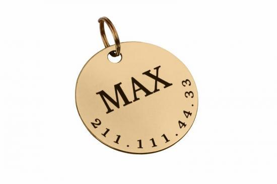 identifikacni-znamka-30-mm-silvergold-1300_(1)_(1).jpeg