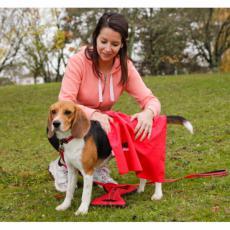 Náhled  Ručník pro psa z mikrovlákna červený 50x70cm