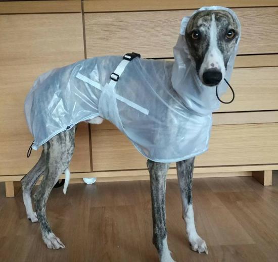 plastenka-rain-coat-40-cm-s1-1490_(1).jpeg