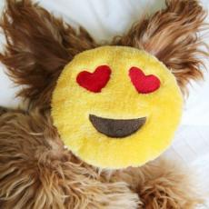Náhled  Emojis Smajlík Love