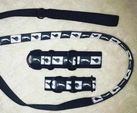 set-voditka-a-obojku-black--white-4-cm-l-1800_(1).jpeg