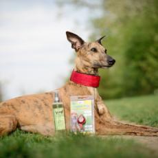 Náhled  Antiparazitní Spray Tea Tree and Neem oil pro psy Yuup 150 ml HE