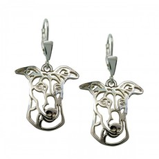 Greyhound - stříbrmé náušnice 925/1000