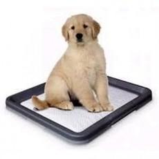 WC Puppy 62,5 x 48 x 3,8 cm