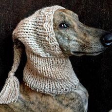 Zimní pletená čepice Greyhound v mnoha barvách